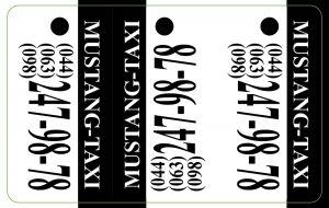 3-tag карты (брелки 28*54 мм)